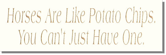 Horses Are Like Potato Chips, You Can't Just Have One.