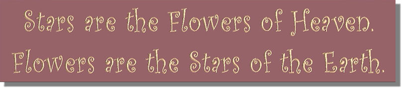 Stars are the Flowers of Heaven.  Flowers are the Stars of the Earth.