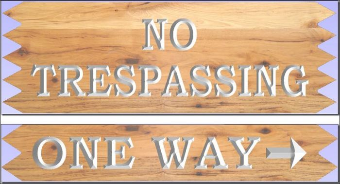 """NO TRESPASSING/ONE WAY"" signs"