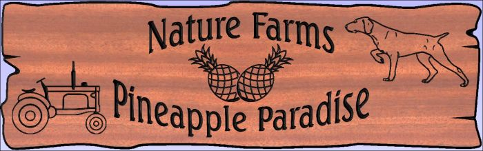 """Nature Farms Pineapple Paradise"" sign"